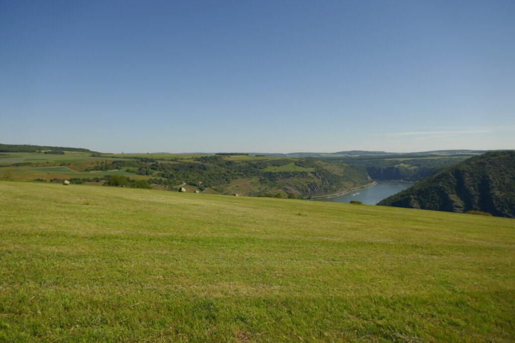 Aussicht über Felder auf ein Stückchen Rhein.