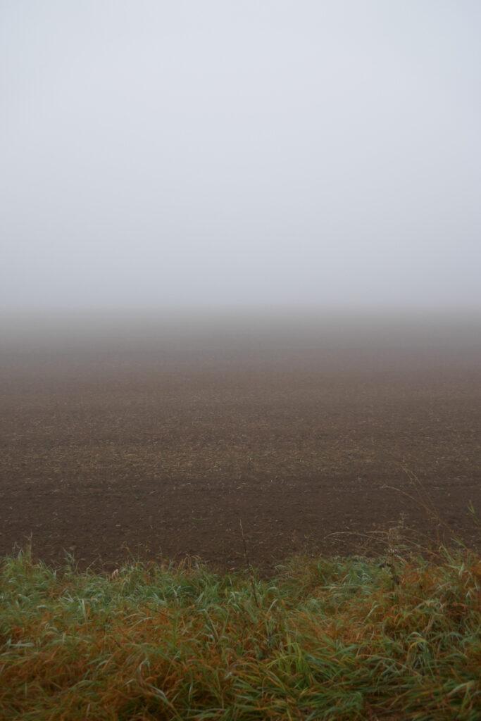 Blick über Felder in den Nebel